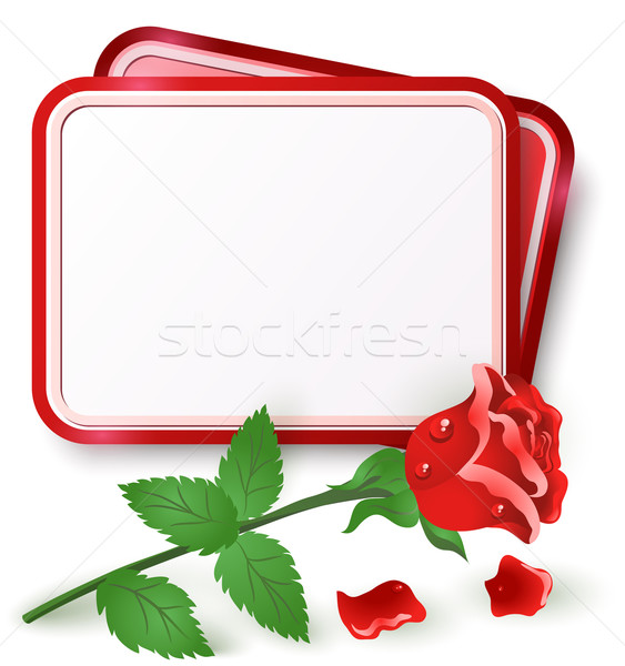 Carta Rose Red biglietto d'auguri rugiada drop rosa Foto d'archivio © Marisha