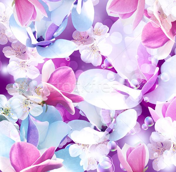Magnolia jabłko kwiaty streszczenie tle latać Zdjęcia stock © Marisha