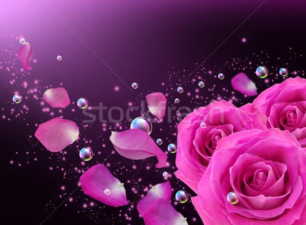 Roses and butterfly Stock photo © Marisha