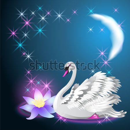 White and black swan and lilies Stock photo © Marisha