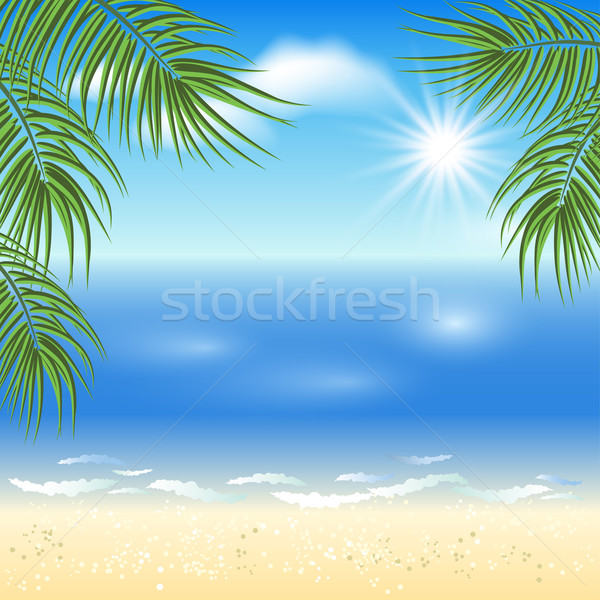 Zandstrand palmbomen zon hemel strand zee Stockfoto © Marisha
