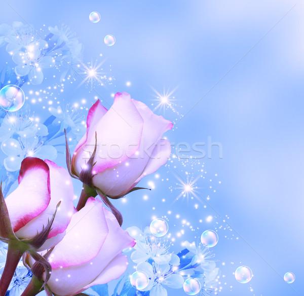 Rose stelle fiore fiori primavera Foto d'archivio © Marisha