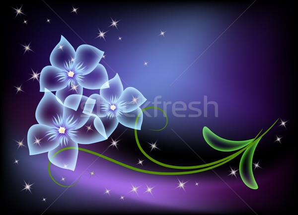 Transparent flowers and stars Stock photo © Marisha