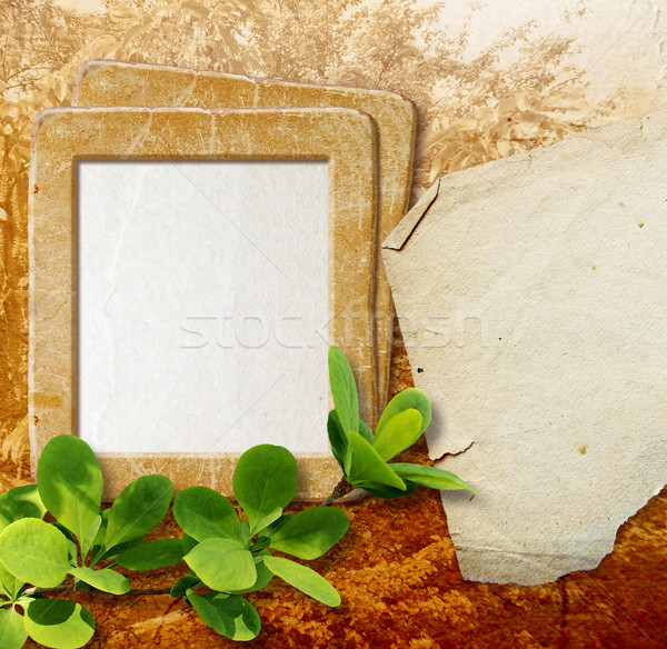 Photo frame with paper for letter Stock photo © Marisha