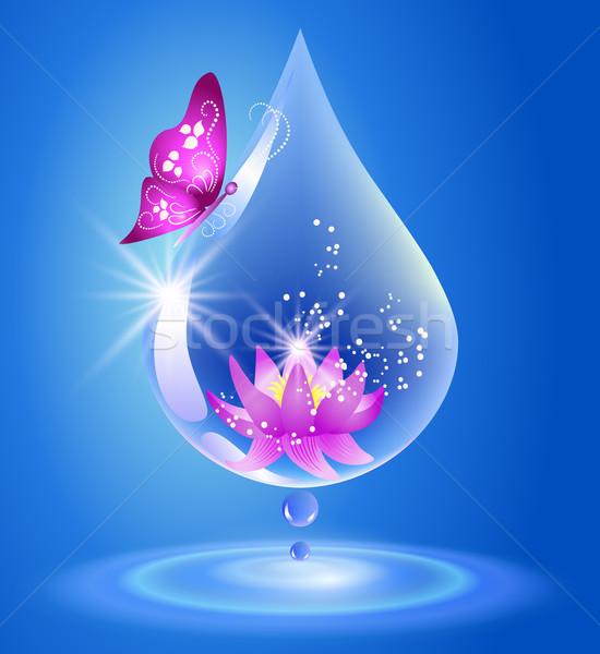 Csepp liliom vízcsepp szimbólum tiszta víz víz Stock fotó © Marisha