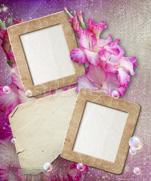 Grunge frame with gladiolus and paper  Stock photo © Marisha