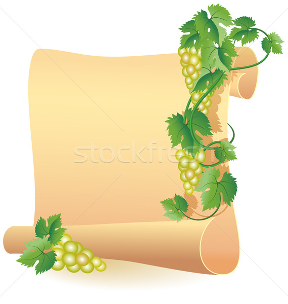 Parchment for your text and grapes Stock photo © Marisha