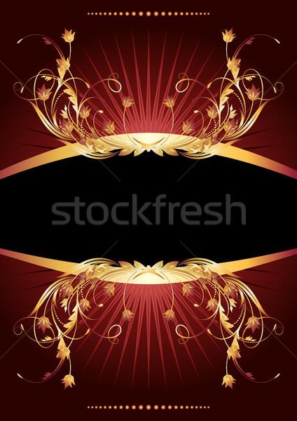 роскошный орнамент Лучи дизайна кадр Сток-фото © Marisha