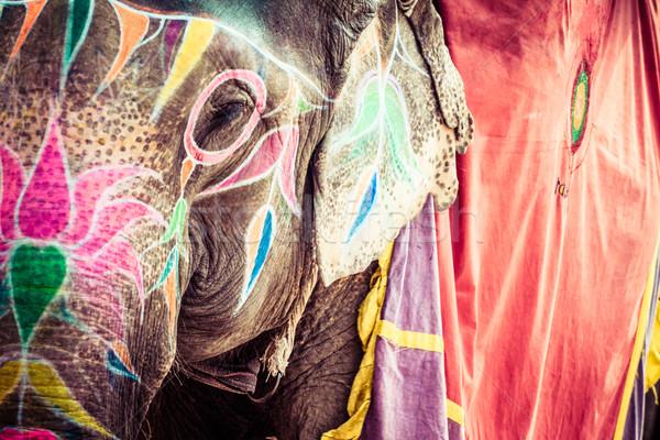 Słoń Indie oka twarz projektu podróży Zdjęcia stock © Mariusz_Prusaczyk