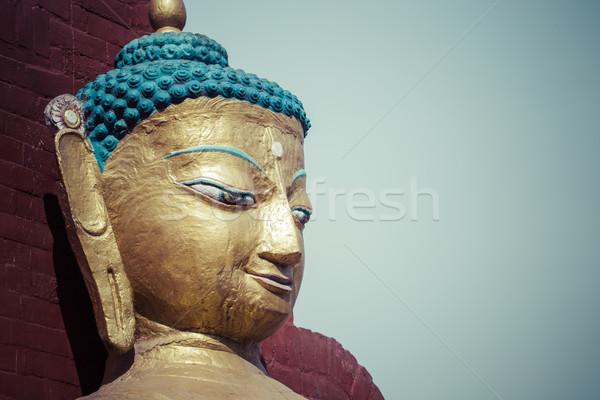 Buddy posąg Nepal drzewo złota architektury Zdjęcia stock © Mariusz_Prusaczyk