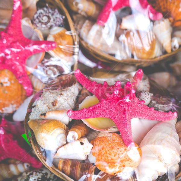 Denizyıldızı satış pazar plaj deniz arka plan Stok fotoğraf © Mariusz_Prusaczyk