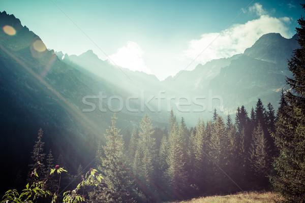 Vue montagnes randonnée sentier Pologne Europe Photo stock © Mariusz_Prusaczyk