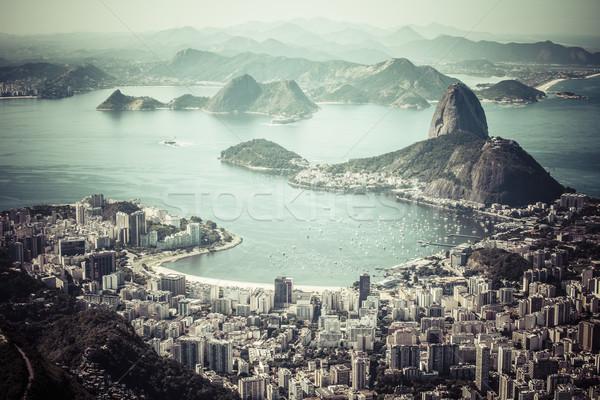 Rio de Janeiro Brazylia bochenek plaży miasta lasu Zdjęcia stock © Mariusz_Prusaczyk