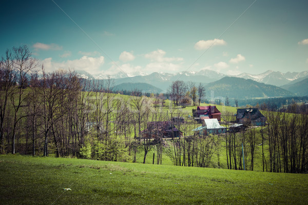 Panorama dağlar bahar zaman Polonya çim Stok fotoğraf © Mariusz_Prusaczyk