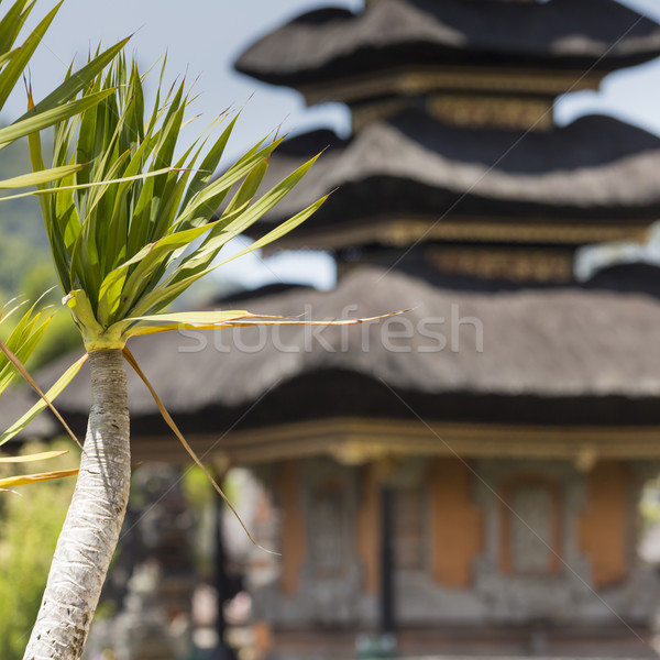 Temple lac bali Indonésie paysage bleu Photo stock © Mariusz_Prusaczyk