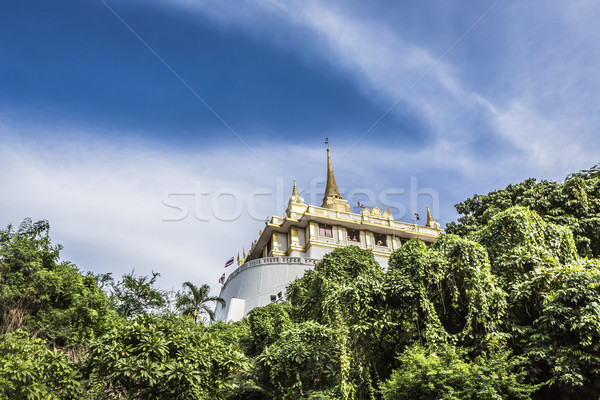 Top storico quartiere Bangkok Thailandia Foto d'archivio © Mariusz_Prusaczyk