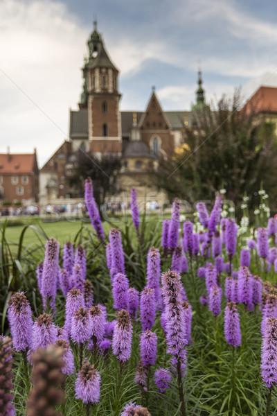 Kert kastély Lengyelország fű város templom Stock fotó © Mariusz_Prusaczyk