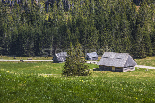 Wooden hut in Chocholowska valley, Tatra Mountains, Poland Stock photo © Mariusz_Prusaczyk