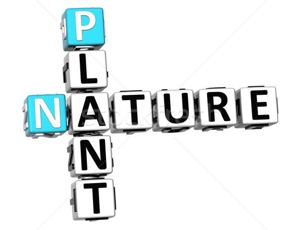 3D plant natuur kruiswoordraadsel tekst witte Stockfoto © Mariusz_Prusaczyk