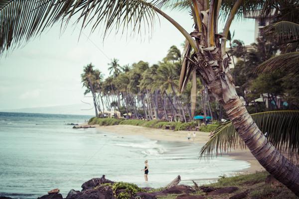 Kaanapali Beach, Maui Hawaii Tourist Destination Stock photo © Mariusz_Prusaczyk