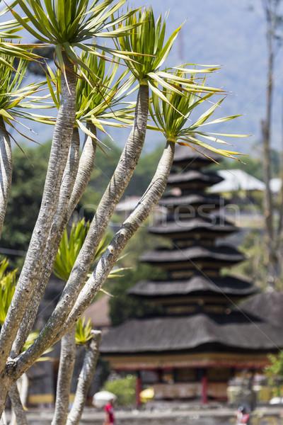 Tapınak göl bali Endonezya manzara mavi Stok fotoğraf © Mariusz_Prusaczyk