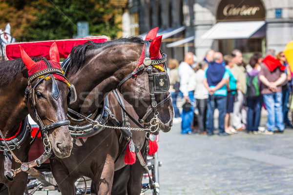 Horse Carriage waiting for tourists at the Old Square in Prague. Stock photo © Mariusz_Prusaczyk