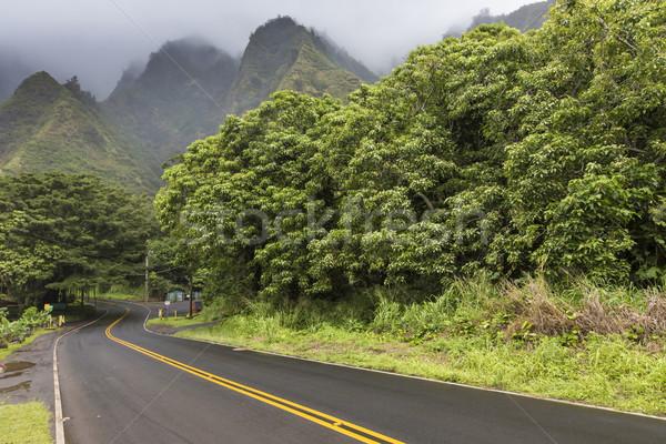 Iao Valley State Park on Maui Hawaii Stock photo © Mariusz_Prusaczyk