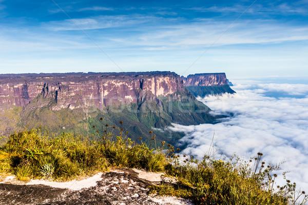 Widoku przeciwmgielne ameryka Łacińska ściany charakter krajobraz Zdjęcia stock © Mariusz_Prusaczyk