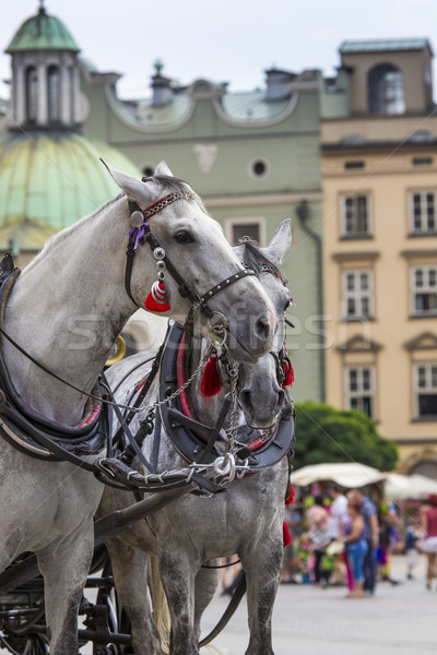 Horses and carts on the market in Krakow, Poland. Stock photo © Mariusz_Prusaczyk