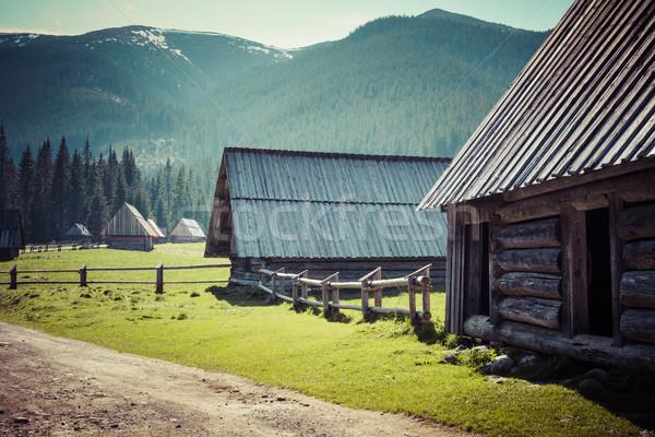 Photo stock: Vallée · montagnes · Pologne · route · forêt · neige