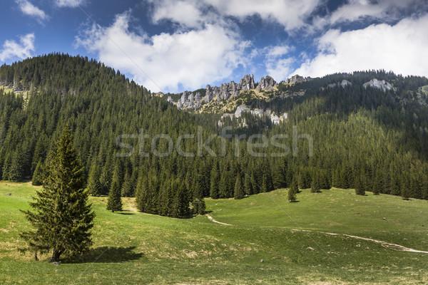 Cabaña valle montanas Polonia carretera Foto stock © Mariusz_Prusaczyk