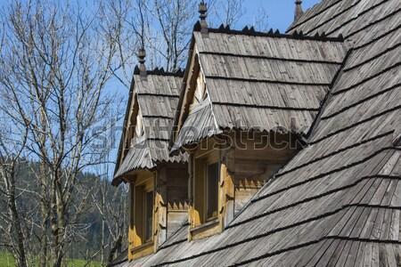Tradycyjny chata domu drewna projektu Zdjęcia stock © Mariusz_Prusaczyk