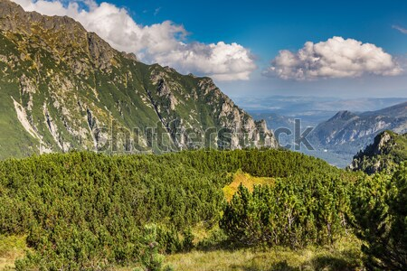 Mountains landscape.Tatra Mountains, Poland.  Stock photo © Mariusz_Prusaczyk