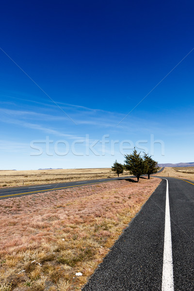 The two roads that leading to the mountains Stock photo © markdescande