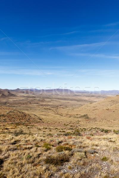 Portré gyönyörű zöld völgy hegyek kilátás Stock fotó © markdescande