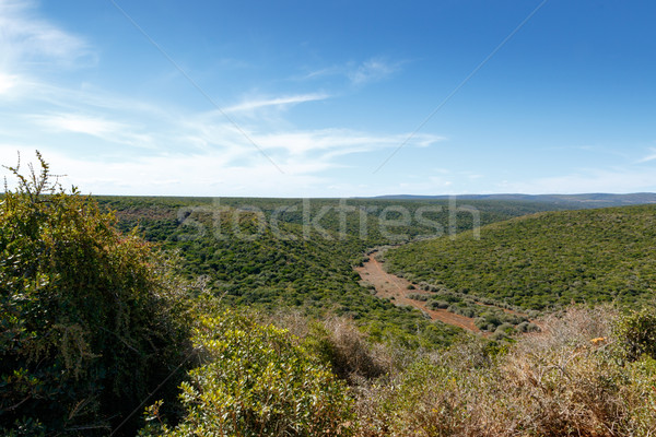 Fű tájkép felhős elefánt park út Stock fotó © markdescande