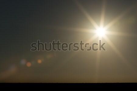 Güzel gün batımı star güneş fil gökyüzü Stok fotoğraf © markdescande