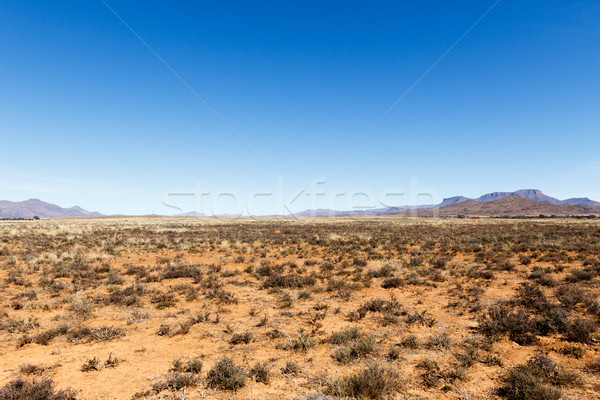 Barren field with mountains and blue sky Stock photo © markdescande