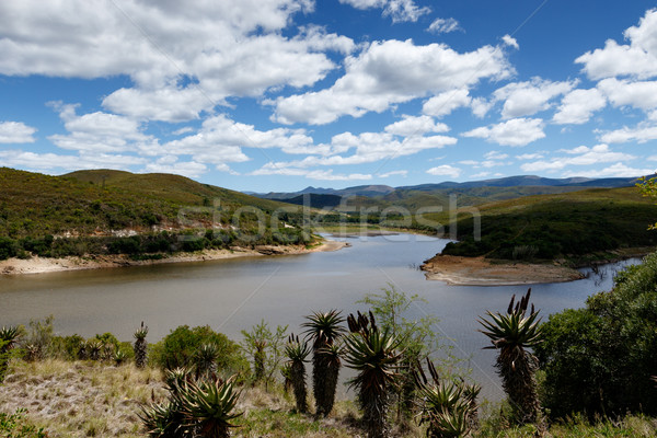 Loerie Dam Nature Reserve with clouds and skies Stock photo © markdescande