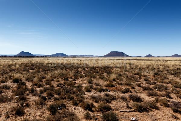 Dağlar mavi gökyüzü sarı alanları Güney Afrika orman Stok fotoğraf © markdescande