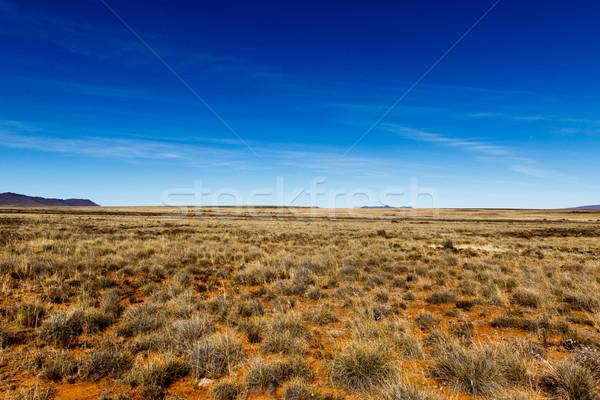Jaune champs montagne vue côté belle Photo stock © markdescande