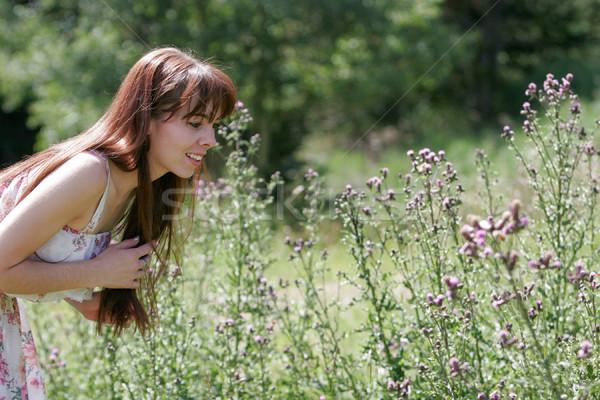 若い女性 夏 日 アップ コロラド州 山 ストックフォト © markhayes