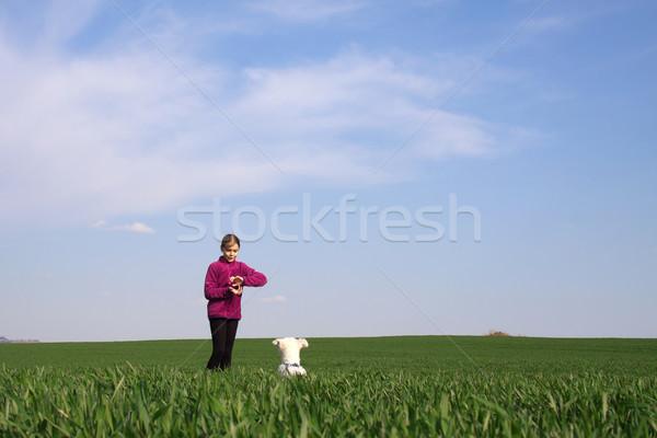 Lány kutya játszik fű égbolt farm Stock fotó © maros_b