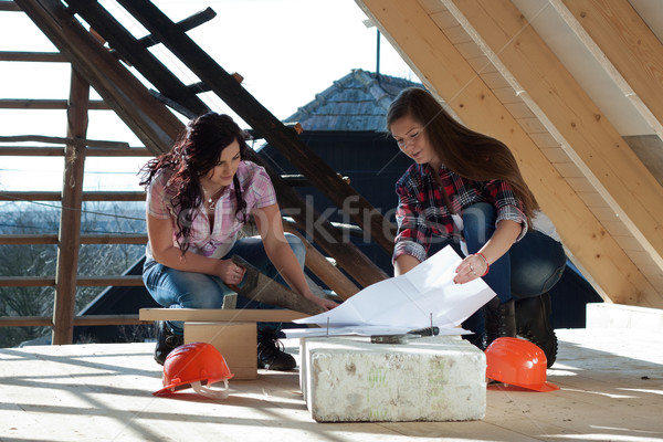 Stock photo: Two young woman repairing the roof of the house