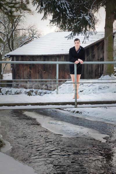 Costume inverno mini piedi ponte Foto d'archivio © maros_b