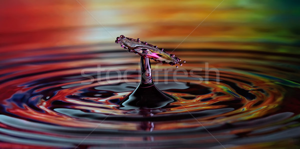 Water drop Stock photo © maros_b