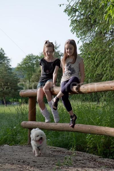 Dwa teen dziewcząt posiedzenia Zdjęcia stock © maros_b