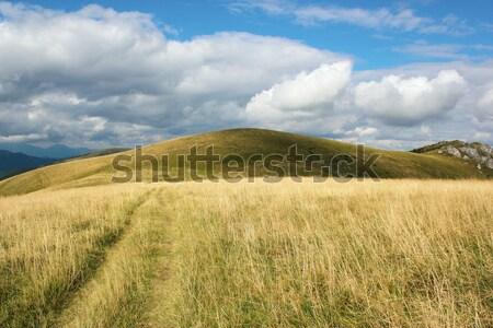 Mountain scenery, Velka Fatra, Slovakia Stock photo © martin33
