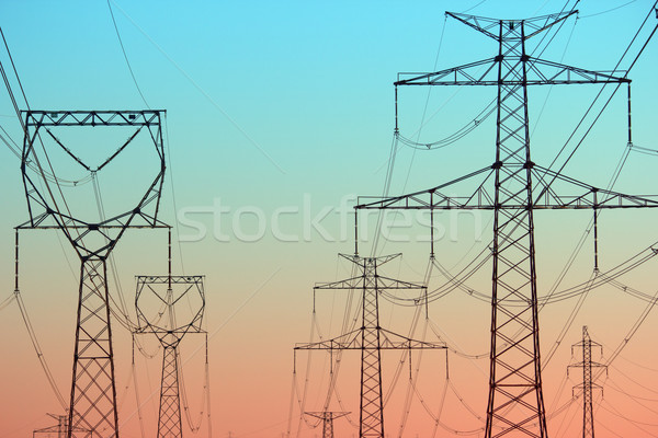 Power lines in the morning light Stock photo © martin33