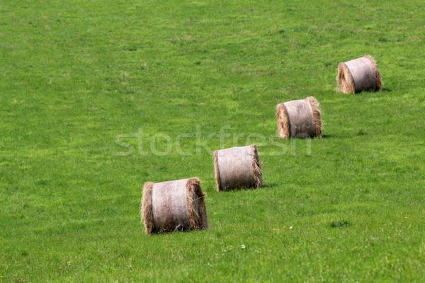 сено области зеленый стране пакет луговой Сток-фото © martin33